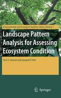 Landscape Pattern Analysis for Assessing Ecosystem Condition - Environmental and Ecological Statistics 1 (Paperback)