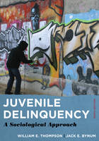 Juvenile Delinquency: A Sociological Approach (Paperback)