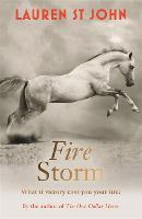 The One Dollar Horse: Fire Storm: Book 3 - The One Dollar Horse (Paperback)