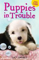 Animal Ark: Puppies in Trouble: Puppies in the Pantry & Puppy in a Puddle - Animal Ark (Paperback)