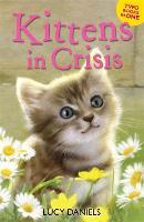 Animal Ark: Kittens in Crisis: Tabby in the Tub & Cats in the Caravan - Animal Ark (Paperback)