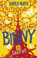 Binny in Secret: Book 2 - Binny (Hardback)