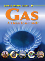 Gas: A Clean Fossil Fuel? - World Energy Issues (Hardback)