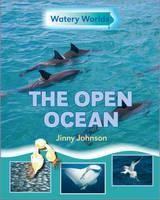The Open Ocean - Watery Worlds No. 4 (Hardback)