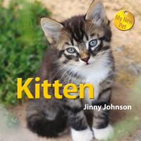 Kitten - My New Pet 2 (Hardback)