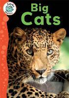 Tadpoles Learners: Big Cats