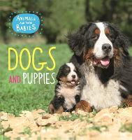 Animals and their Babies: Dogs & puppies - Animals and their Babies (Paperback)