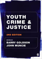 Youth Crime and Justice (Hardback)