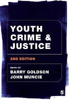 Youth Crime and Justice (Paperback)