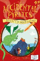 Journey to Dragon Island - The Accidental Pirates (Paperback)