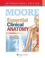 Essential Clinical Anatomy