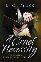 A Cruel Necessity - A John Grey Historical Mystery (Hardback)