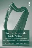 'And so began the Irish Nation': Nationality, National Consciousness and Nationalism in Pre-modern Ireland (Hardback)