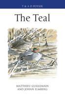 The Teal (Hardback)