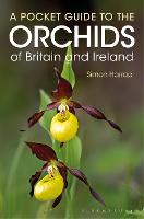Pocket Guide to the Orchids of Britain and Ireland (Paperback)