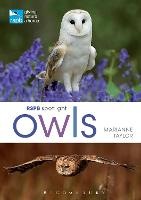 RSPB Spotlight Owls (Paperback)
