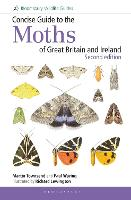 Concise Guide to the Moths of Great Britain and Ireland: Second edition (Spiral bound)