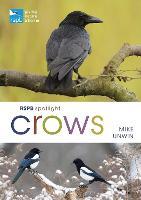 RSPB Spotlight Crows - RSPB (Paperback)