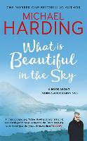 What is Beautiful in the Sky: A book about endings and beginnings (Hardback)