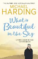 What is Beautiful in the Sky: A book about endings and beginnings (Paperback)