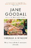 Through A Window (Paperback)