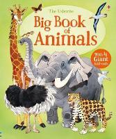 Big Book of Animals - Big Books (Hardback)