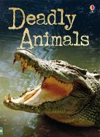 Beginners Plus Deadly Animals - Beginners Plus Series (Paperback)