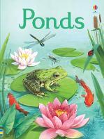 Ponds - Beginners (Hardback)