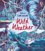 Look Inside Wild Weather - Look Inside (Board book)