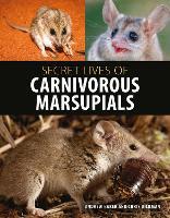 Secret Lives of Carnivorous Marsupials (Hardback)