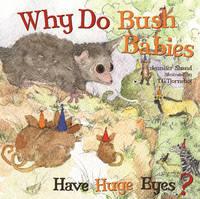 Why Do Bush Babies Have Huge Eyes? (Board book)