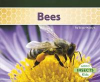 Bees - Insects (Paperback)