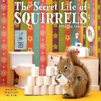 2022 Secret Life Of Squirrels Mini Wall Calendar