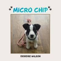 Micro Chip (Paperback)