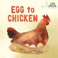 Life Cycles: Egg to Chicken - Life Cycles (Paperback)