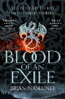 Blood of an Exile - Dragons of Terra (Paperback)