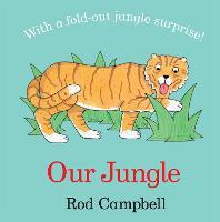 Our Jungle (Board book)