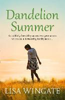 Dandelion Summer - The Blue Sky Hill Series (Paperback)