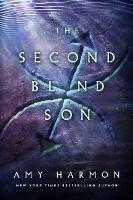 The Second Blind Son - The Chronicles of Saylok (Paperback)