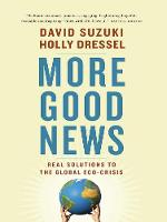 More Good News: Real Solutions to the Global Eco-Crisis (Paperback)