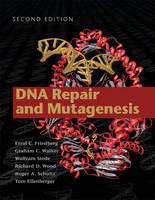 DNA Repair and Mutagenesis (Hardback)