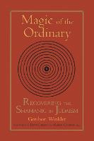 Magic of the Ordinary: Recovering the Shamanic in Judaism (Paperback)
