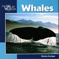 Whales - Our Wild World (Paperback)