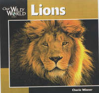 Lions - Our Wild World (Paperback)