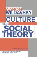 Culture and Social Theory (Hardback)