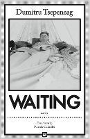 Waiting: Stories (Paperback)