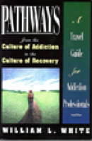 Pathways From The Culture Of Addiction To The Culture Of Rec (Paperback)