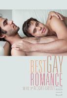Best Gay Romance 2013 (Paperback)
