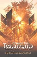 Connect the Testaments: A 365-Day Devotional with Bible Reading Plan (Paperback)