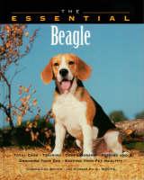 The Essential Beagle - Essential Guide S. (Paperback)